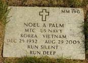 Noel Andrew Palm