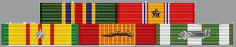 Tunny's Awards During Vietnam War